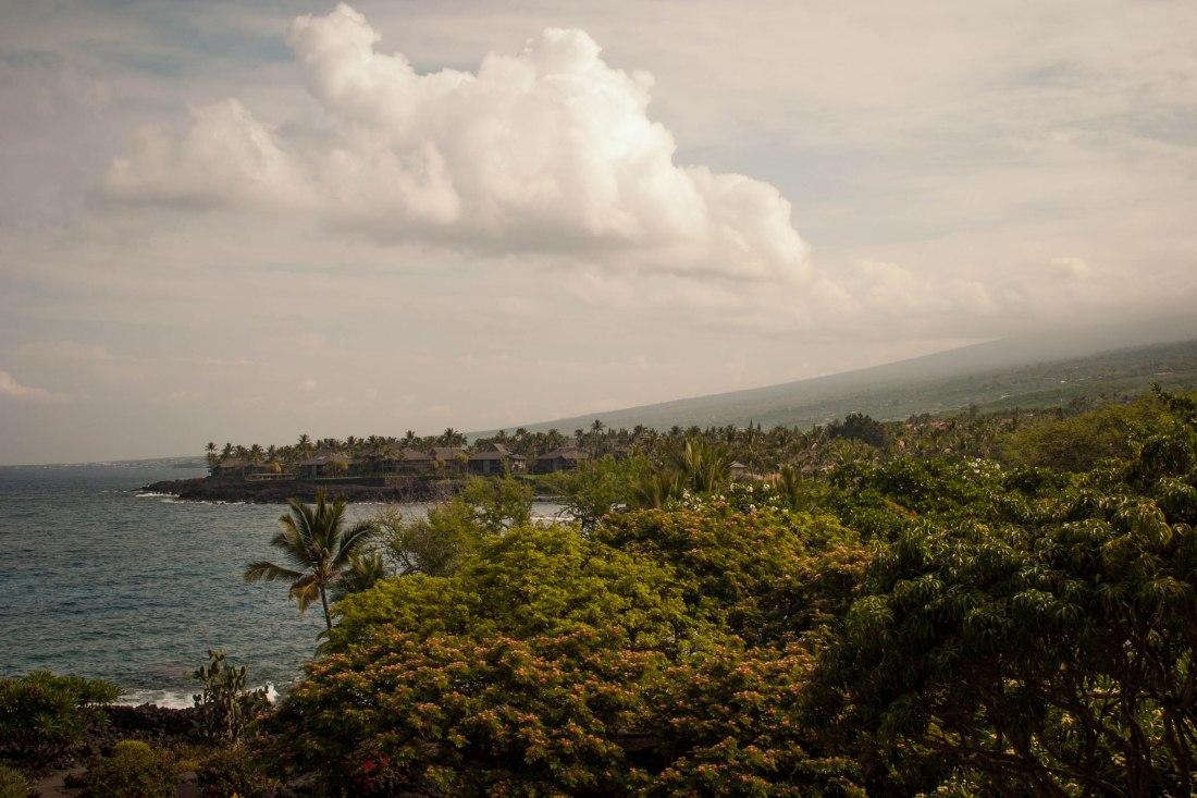 HAWAII-9391