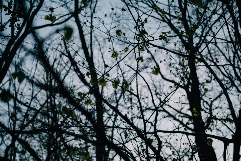 grumpys-6068
