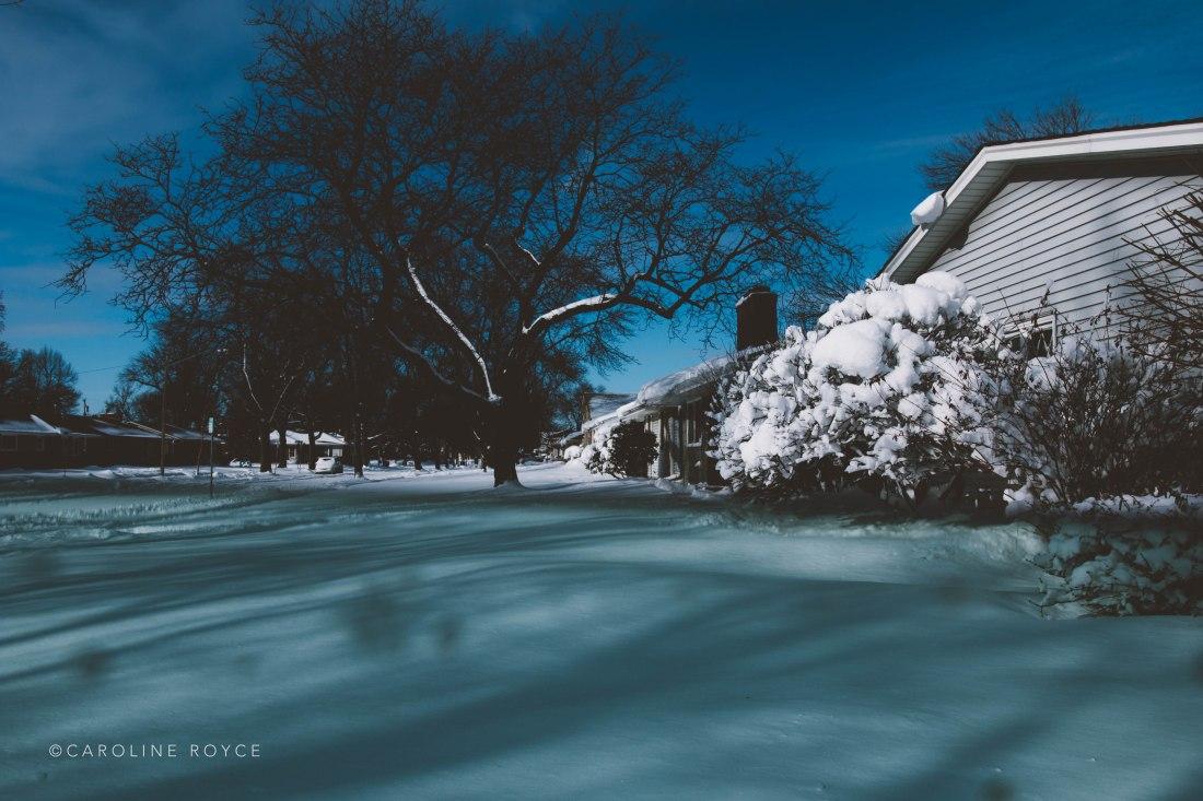 SNOW_FEB-1