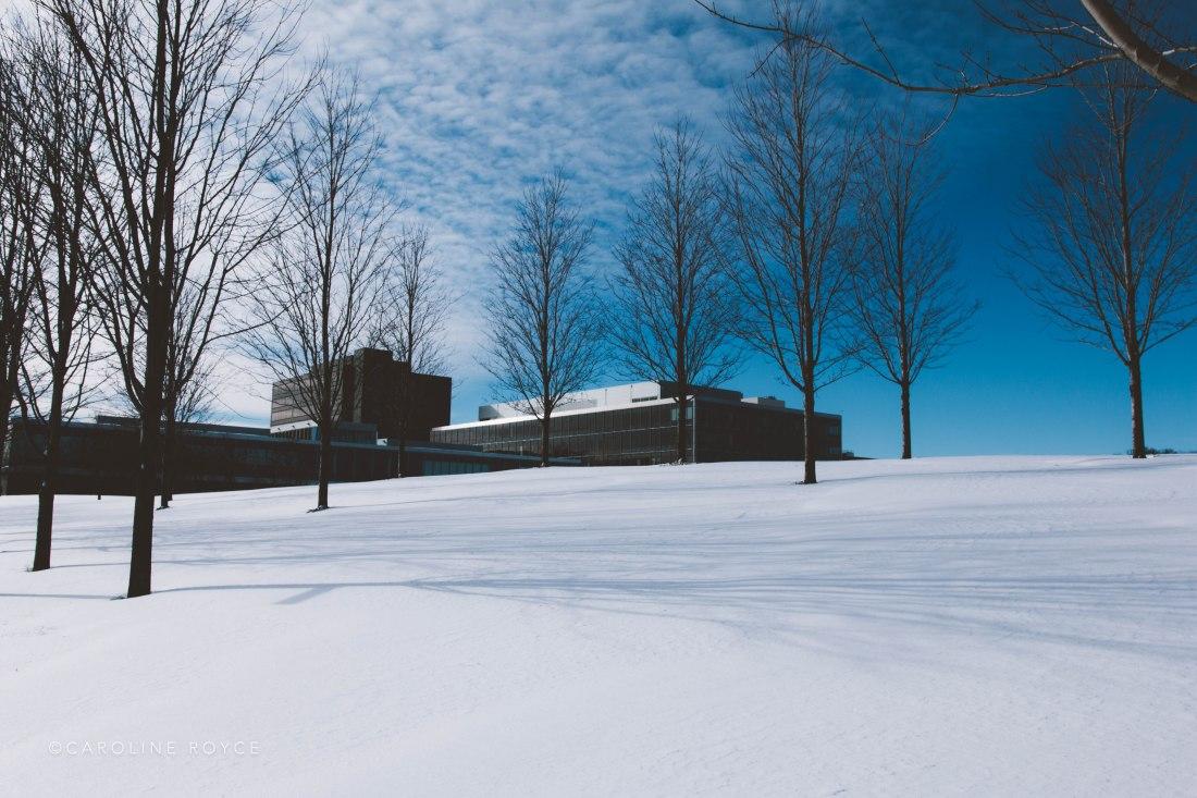 SNOW_FEB-4